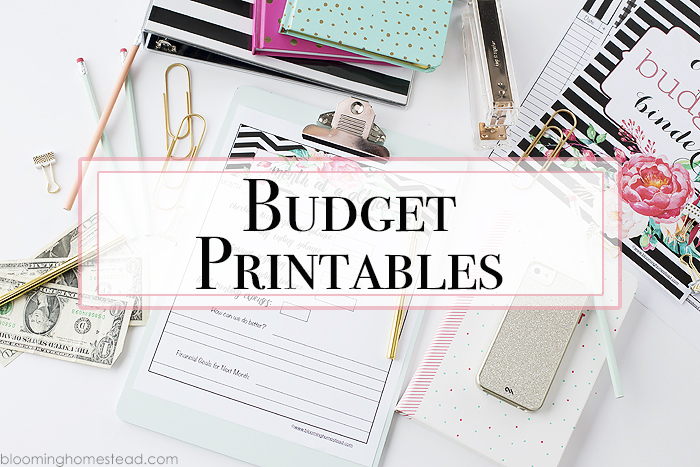 Printable Budget Binders Blooming Homestead