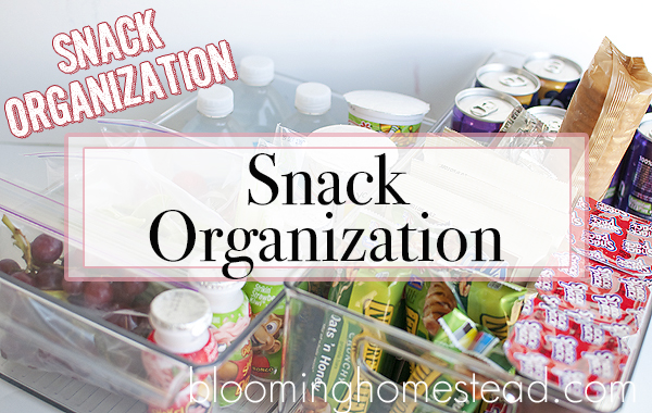 Back To School: Snack Organization