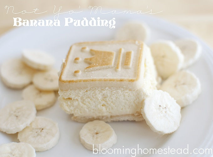 The BEST banana pudding ever…
