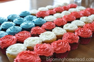 Patriotic cupcakes at blooming homestead