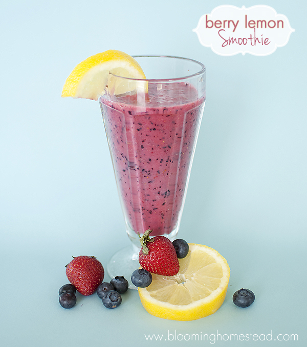 Refreshing Berry Lemon Smoothie