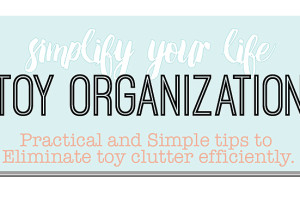 Easy Toy Organization