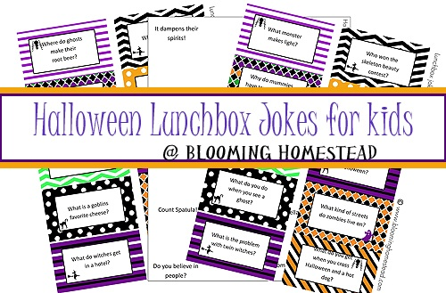 Lunchbox Jokes for kids {Halloween Edition!}