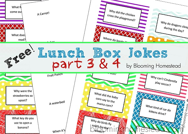 Lunch Jokes for Kids- Part 2