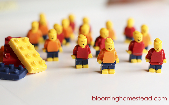 Candy Legos by Blooming Homestead