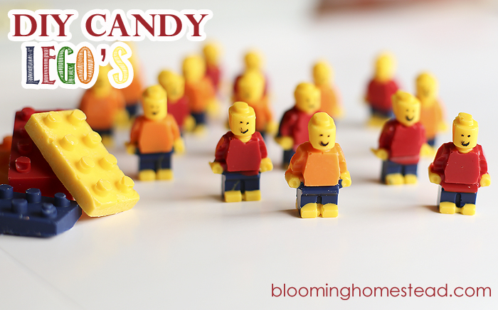 Candy Legos by Blooming Homestead2