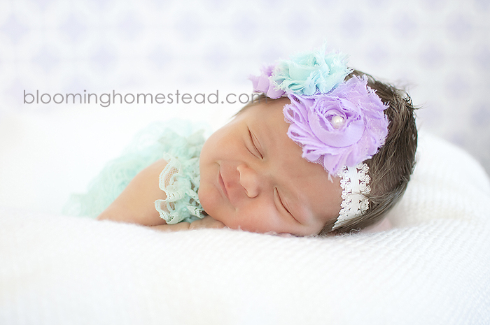 Baby Headband at Blooming Homestead