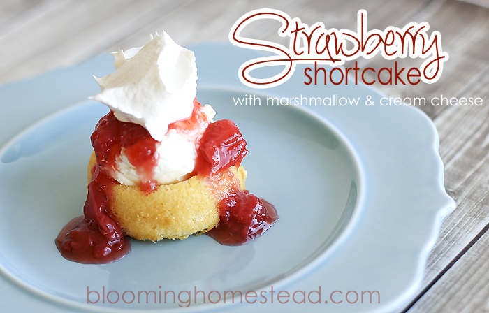 Strawberry Shortcake with Marshmallow Cream Cheese
