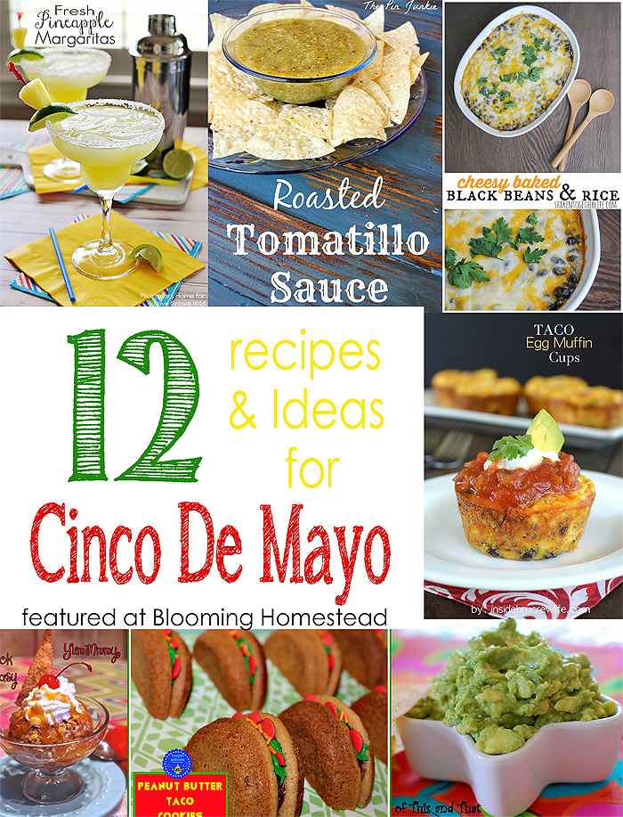 Cinco De Mayo Recipes and Ideas