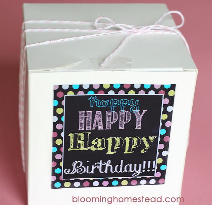 Manicure Kit Birthday Gift with Printable