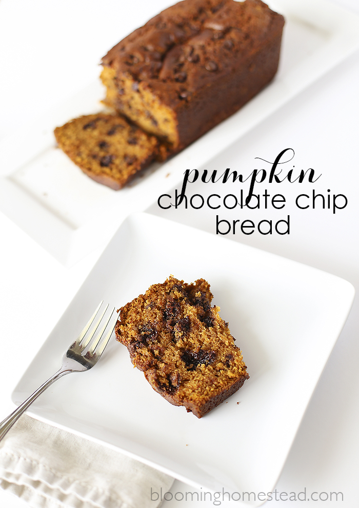 Pumpkin Chocolate Chip Bread  #recipe