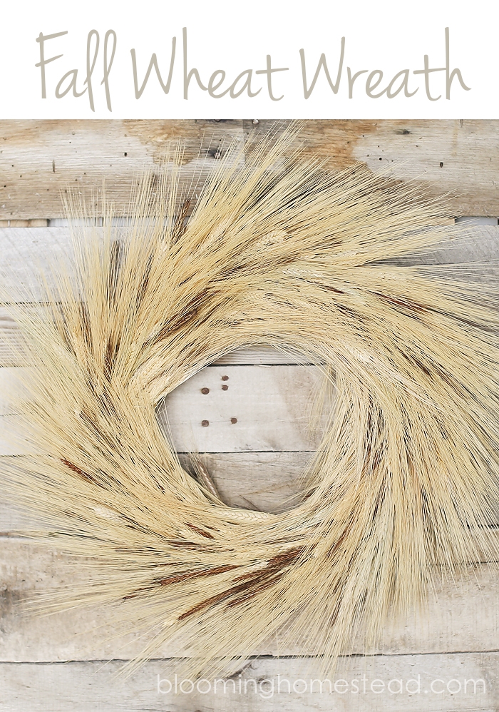 Lovely fall wheat wreath tutorial by Blooming Homestead #DIY  #fallwreath #wheatwreath #videotutorial #tutorial
