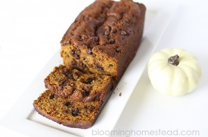 Pumpkin Chocolate Chip Bread by Blooming Homestead