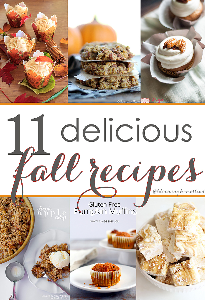 This collection of Delicious Fall Recipes looks divine! |fall|recipes|