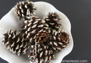 Simple and easy tutorial for gorgeous metallic painted pinecones. | diy |pinecones | christmas | home decor |fall
