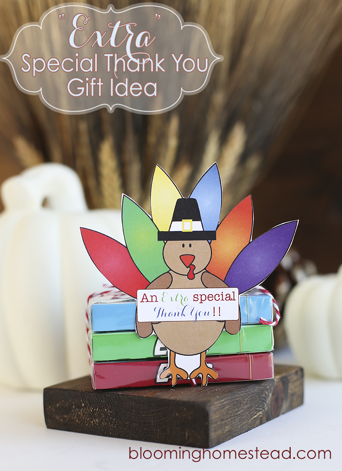 Extra Special Thankful Gift Idea by Blooming Homestead copy