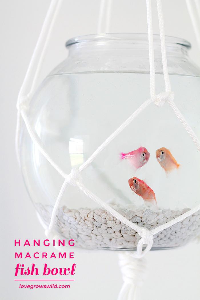 Hanging-Macrame-Fish-Bowl-final2