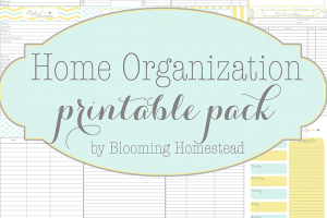 Home Organizational Printables by Blooming Homestead