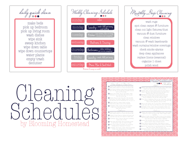 cleaningschedules coral copy