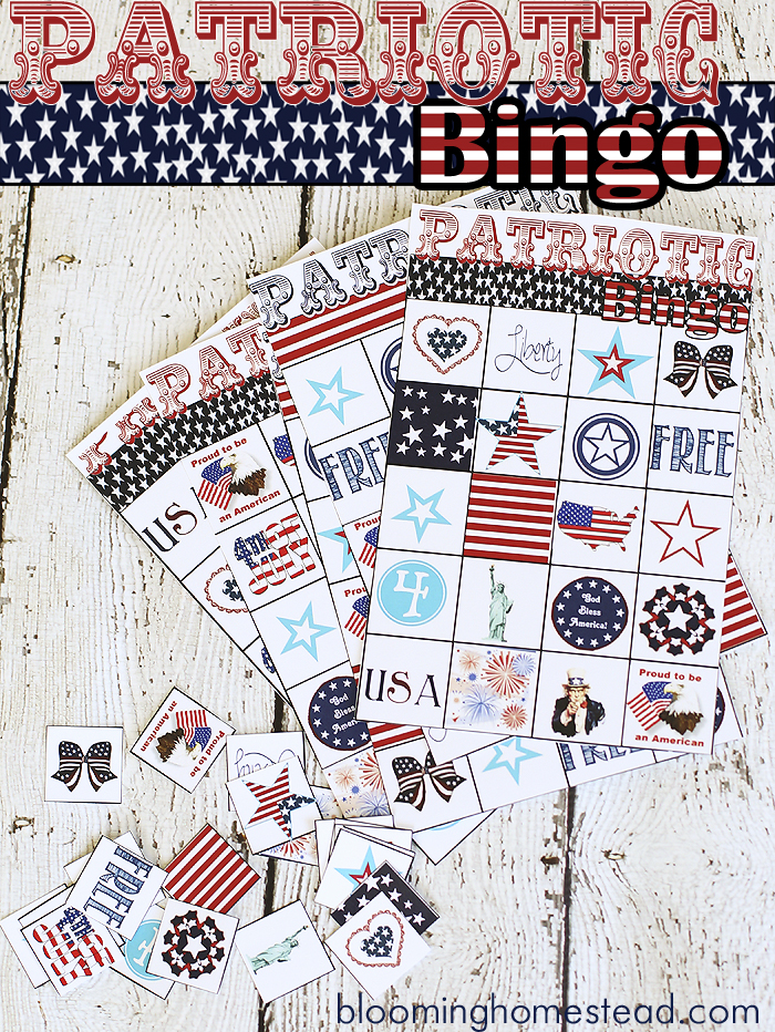 Patriotic-4th-of-July-Bingo-at-Blooming-Homestead2
