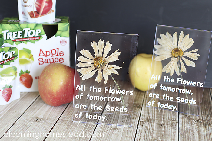 DIY Teacher Appreciation Pressed Flower Gift