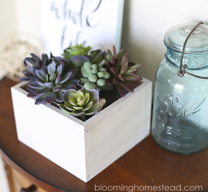 DIY Succulent Home Decor by Blooming Homestead1