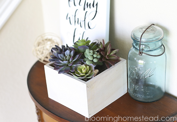 DIY Succulent Home Decor by Blooming Homestead2