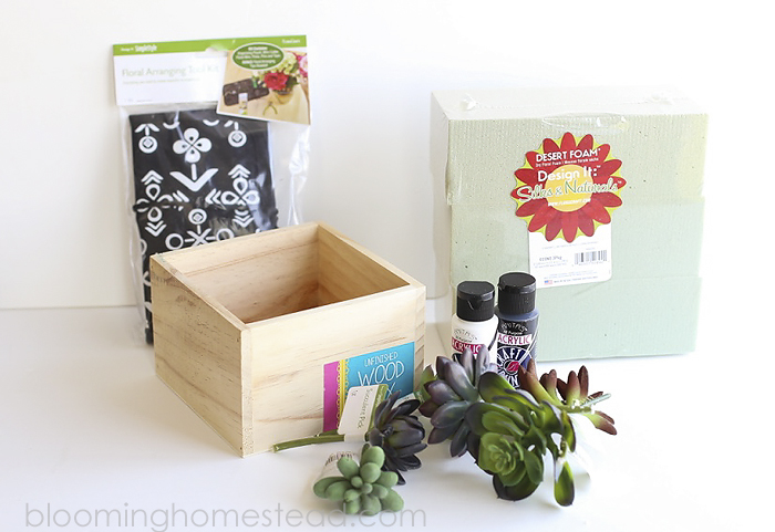 DIY Succulent Home Decor by Blooming Homestead8
