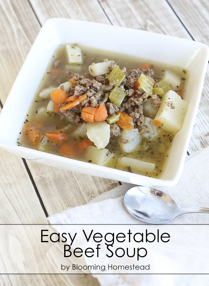 Easy-Vegetable-Beef-Soup