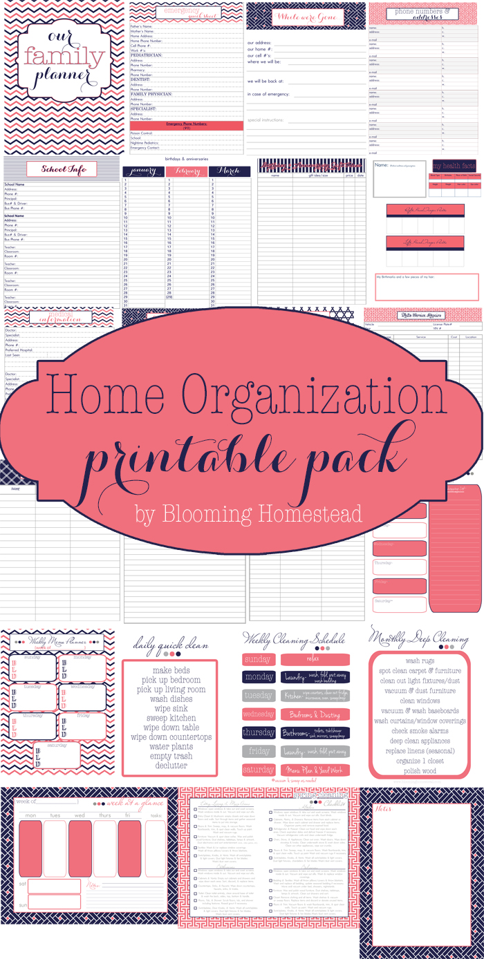 Free Home Organizational printables to get your family organized! These are free and come in 3 different design styles.