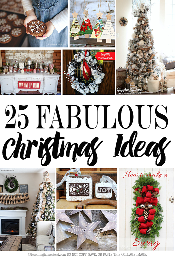 25 Great Christmas Ideas
