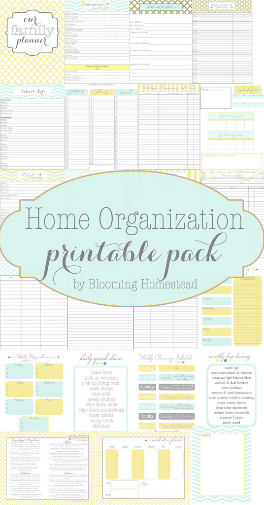 Free printable home organizational binders.