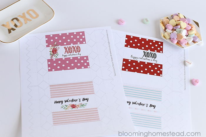 Printable Valentine Favor Boxes in two styles, perfect for girls and boys.