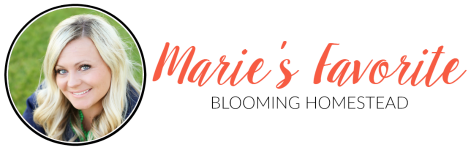 Maries-Favorite-4-1