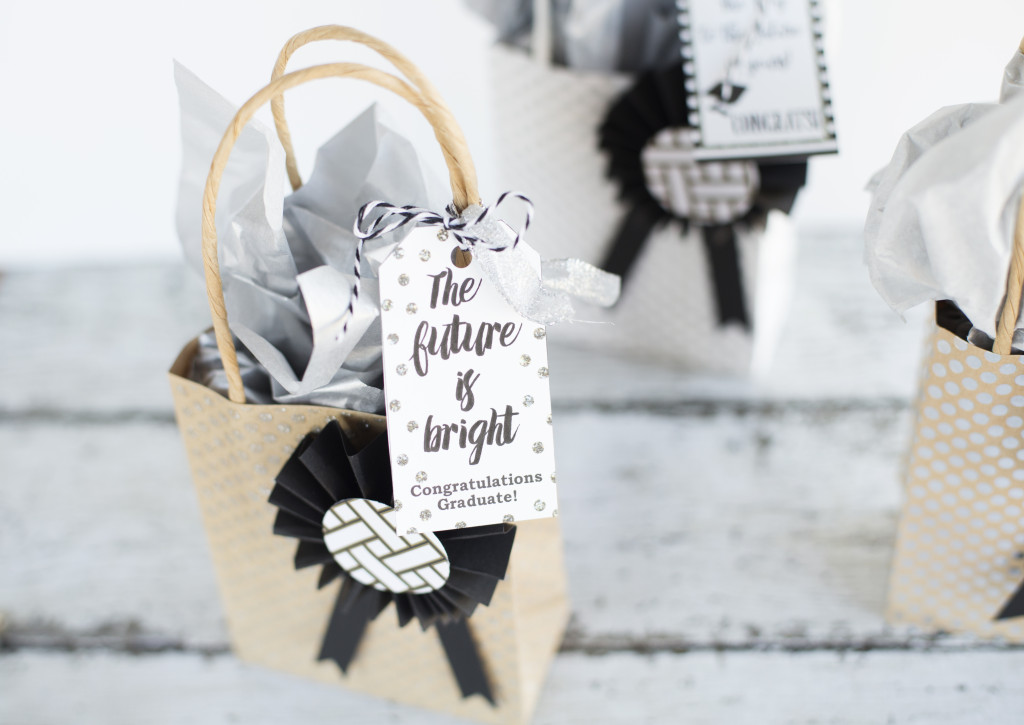 Graduation Gift Bags with printable gift tags