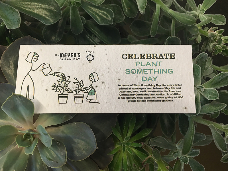 Check out how we are celebrating Plant Something Day and learn how you can make a difference.