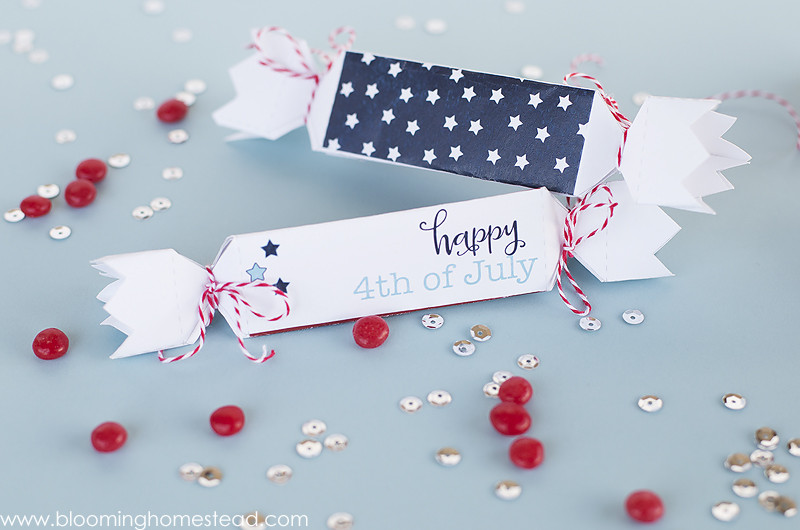 4th of July Favor Boxes