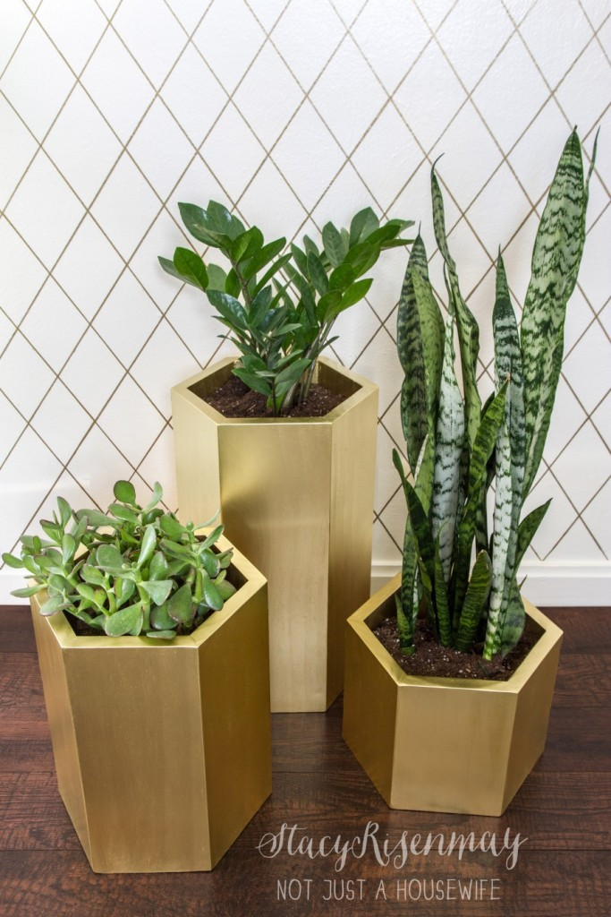 gold-hexagon-planters-900x1350