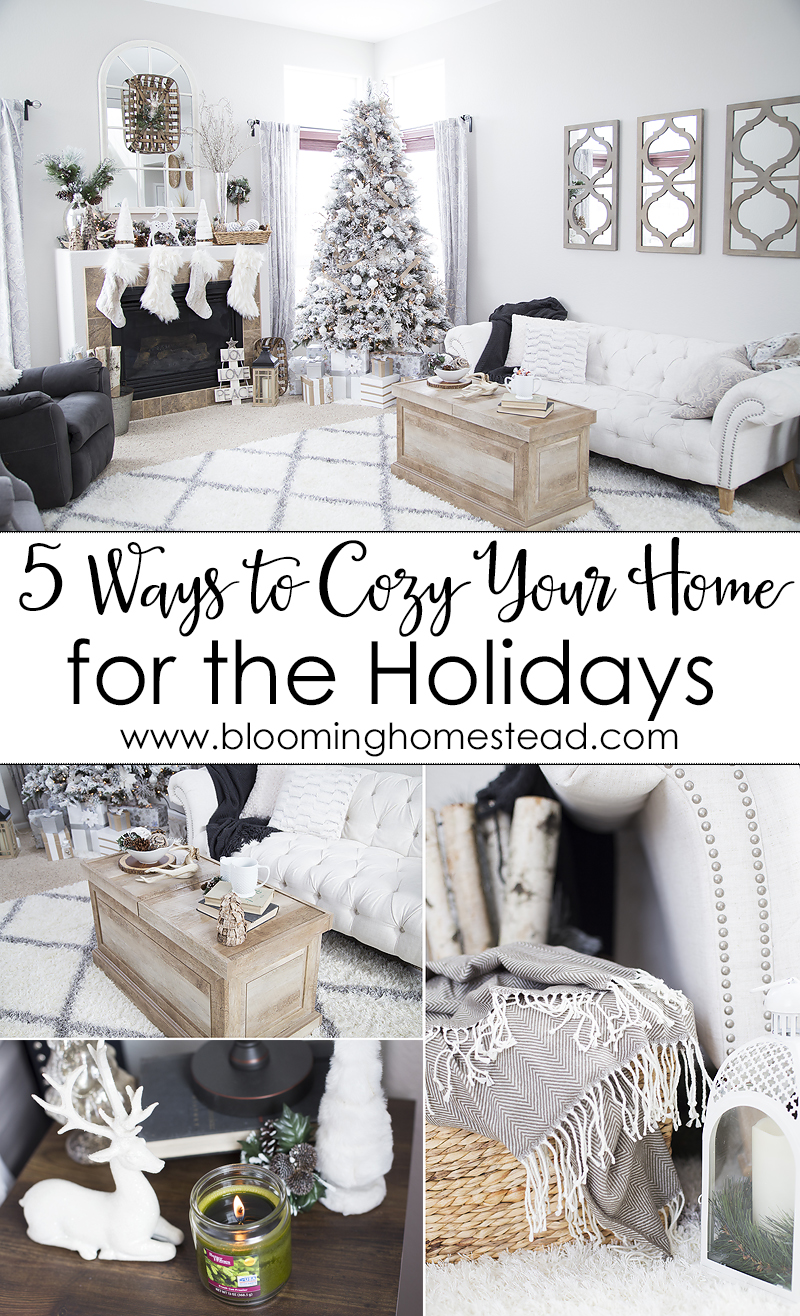 5-ways-to-cozy-your-home-for-the-holidays-with-practical-and-affordable-ideas