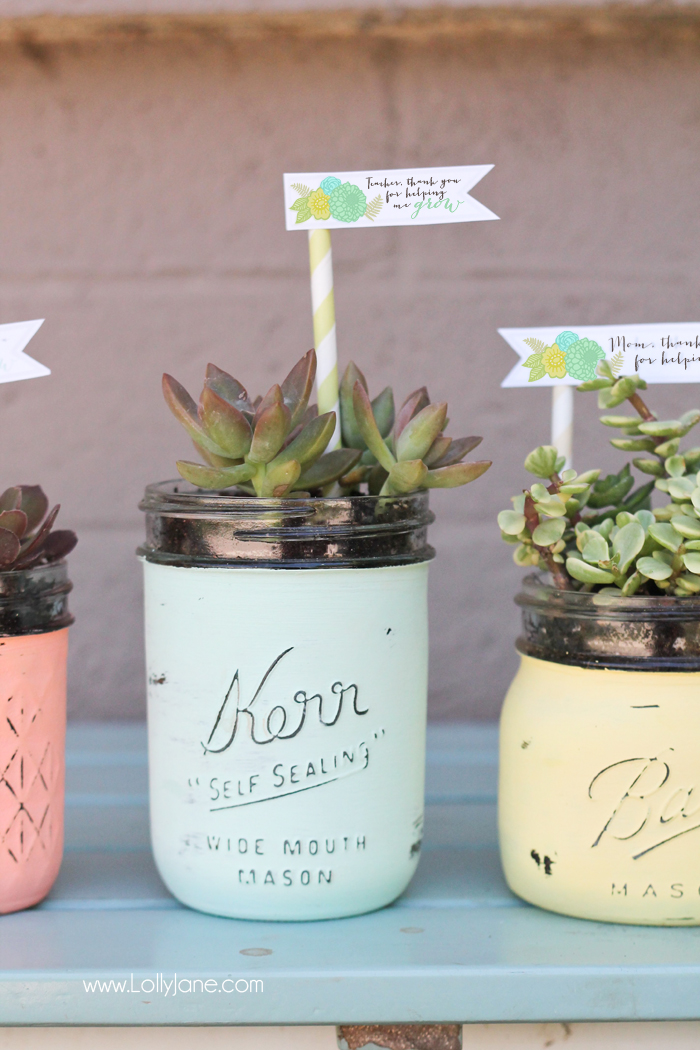 DIY-Distressed-Mason-Jar-Succulent-Pots-with-free-printable-gift-tags