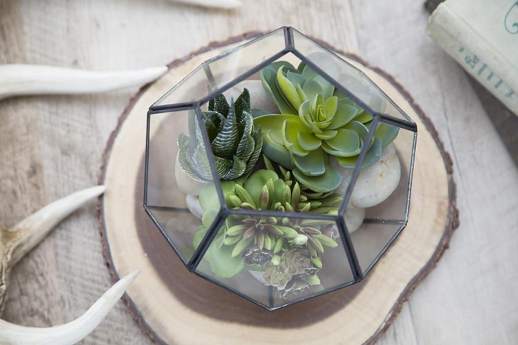 Easy Succulent Terrarium