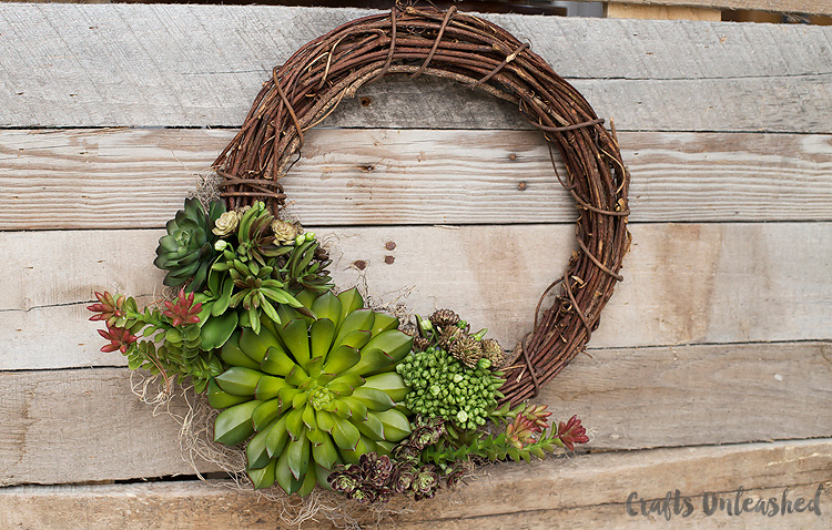 Succulent-DIY-Wreath-Consumer-Crafts-Unleashed-2