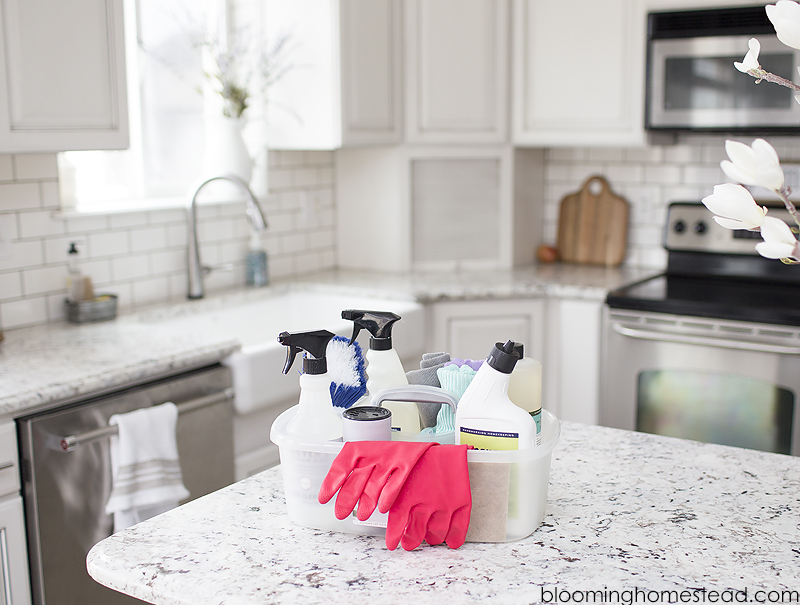 cleaning supplies copy