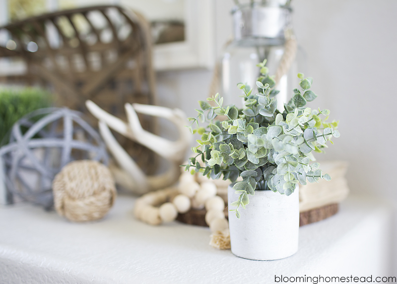 Adding foliage in home decor